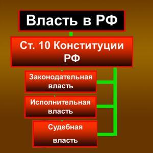 Органы власти Пироговского