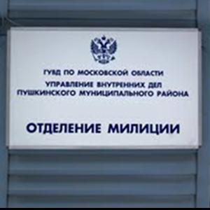 Отделения полиции Пироговского