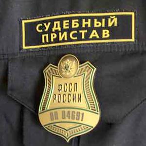 Судебные приставы Пироговского