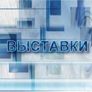 Выставки Пироговского